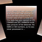 Abu Ghraib screen capture: the text of the CID caption.