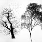 Mimesis/Synthesis