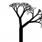 Simulated Tree